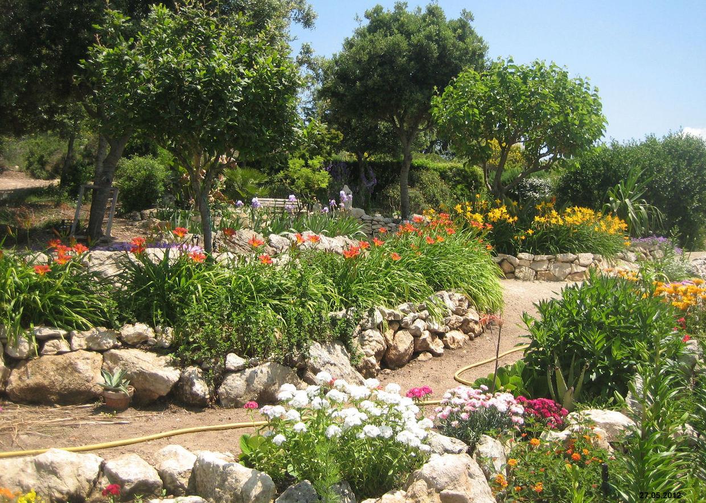 Giardini mgf cosa piantare - Creare giardino roccioso ...