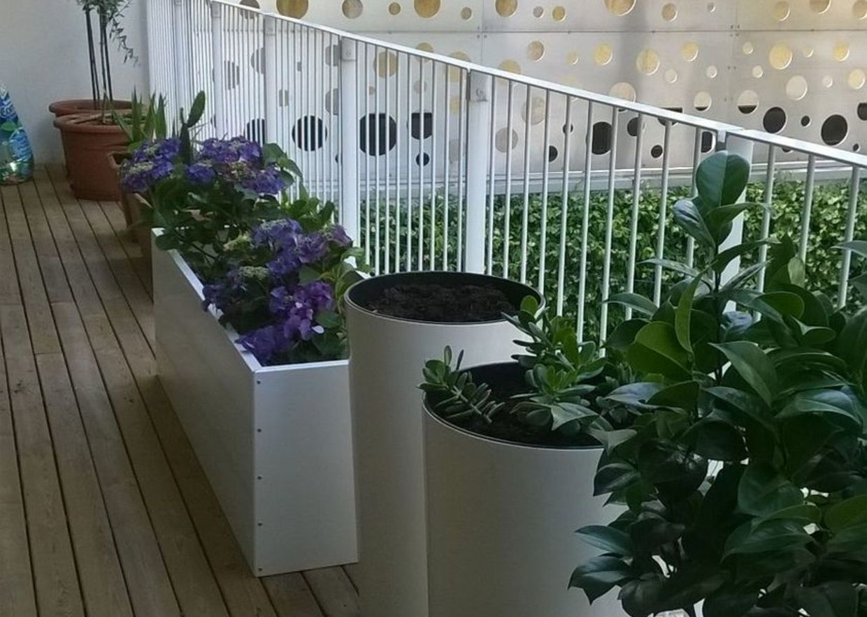 Giardini mgf terrazzo a milano for Camelie in vaso